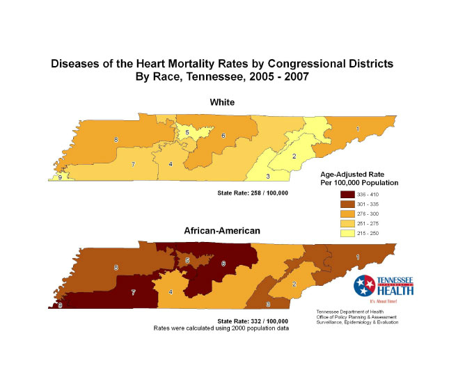 Infographic showing health disparity in Tennessee